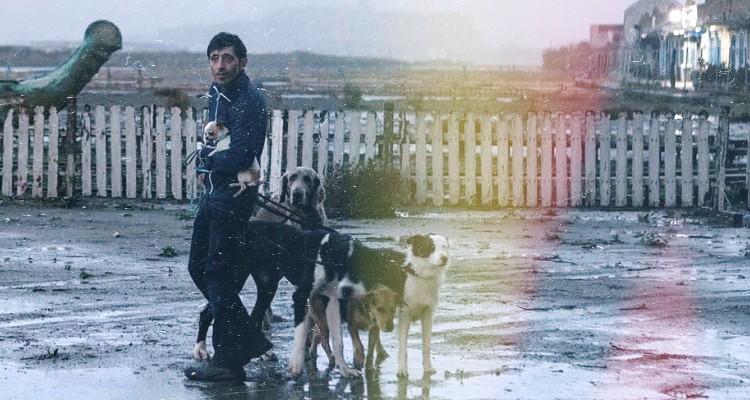 Οι υποκριτικές ικανότητες του Μαρτσέλο Φόντε, ενός ερασιτέχνη ηθοποιού, στηρίζουν όλη την ταινία, ενώ κέρδισε στις Κάννες το Βραβείο Καλύτερου Ηθοποιού. Dogman, Matteo Garrone ~ 2018 | Κριτική Παρασκευή Ελ Μαγκούτ